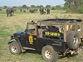 Jeep Safari 01 (7568346170).jpg