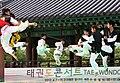 KOCIS Korea Taekwondo Namsan 36 (7628114028).jpg