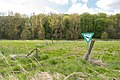 Kalletal - 2015-05-02 - LIP-013 Aberg-Herrengraben (48).jpg