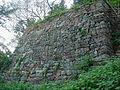 Kanayama Castle.jpg