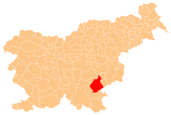Location of the Municipality of Novo Mesto in Slovenia
