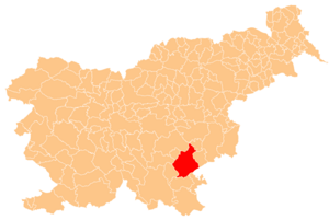City Municipality of Novo Mesto