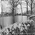 Keukenhof 1964, beeldende kunst, Keukenhof, Bestanddeelnr 916-3261.jpg