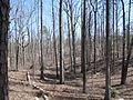 Kings Mountain National Military Park - South Carolina (8558916660) (2).jpg