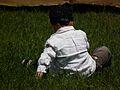 Kleiner Junge sitzend im Gras.JPG