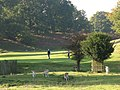 Knole golf course, with deer - geograph.org.uk - 1012786.jpg