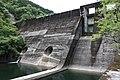 KodaKumi Dam-01.jpg