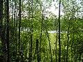 Kortkerossky District, Komi Republic, Russia - panoramio.jpg
