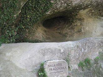Krapina Neanderthal site - Hušnjakovo Hill finding site