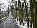 Krapkowice - 22.03.3013 - panoramio.jpg