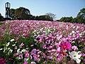 Kumamoto City Zoological and Botanical Gardens.jpg