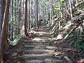 Kumano Kodo Dainichigoe World heritage33.JPG