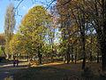 Kyiv Yunist Park11.JPG