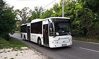 LGB-845 King Long in Telki.jpg