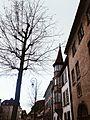 La rue de Turenne en hiver à Colmar.jpg