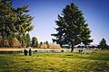 Lake Tapps North Park, 008.jpg