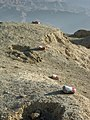 Land mines in Afghanistan.jpg
