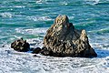 Lands End - Seal Rocks - March 2018 (4917).jpg