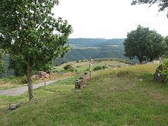 Landscape-IMG 6919.JPG