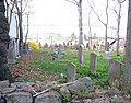 Lawrence plot 216-42 jeh.JPG