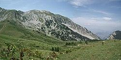 Le Mollard depuis le Col de la Grande Vache.JPG