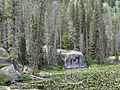 Lily Lake (15058097822).jpg