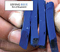 Living Blue Indigo Dye.jpg