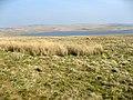 Llyn Aled - geograph.org.uk - 399552.jpg