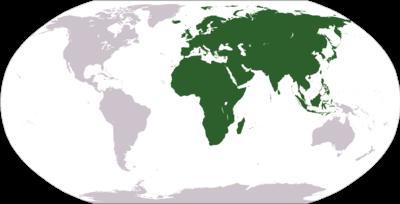 「ユーラシア アフロ」の画像検索結果