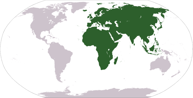 File:LocationAfricaEurasia.png