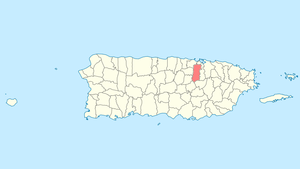 Location of Bayamón in Puerto Rico
