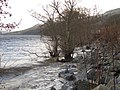 Loch Tay at Fearnan - geograph.org.uk - 354920.jpg
