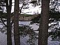 Loch an Eilein Castle framed in Scots pines - geograph.org.uk - 1038827.jpg