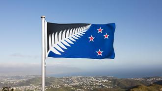 Lockwood silver fern flag - Lockwood's silver fern flag over Wellington, New Zealand