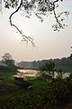 Lone Boat on Riverbank Churni - Halalpur Krishnapur - Nadia 2016-01-17 9050.JPG