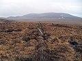Lopsided fence - geograph.org.uk - 1768500.jpg