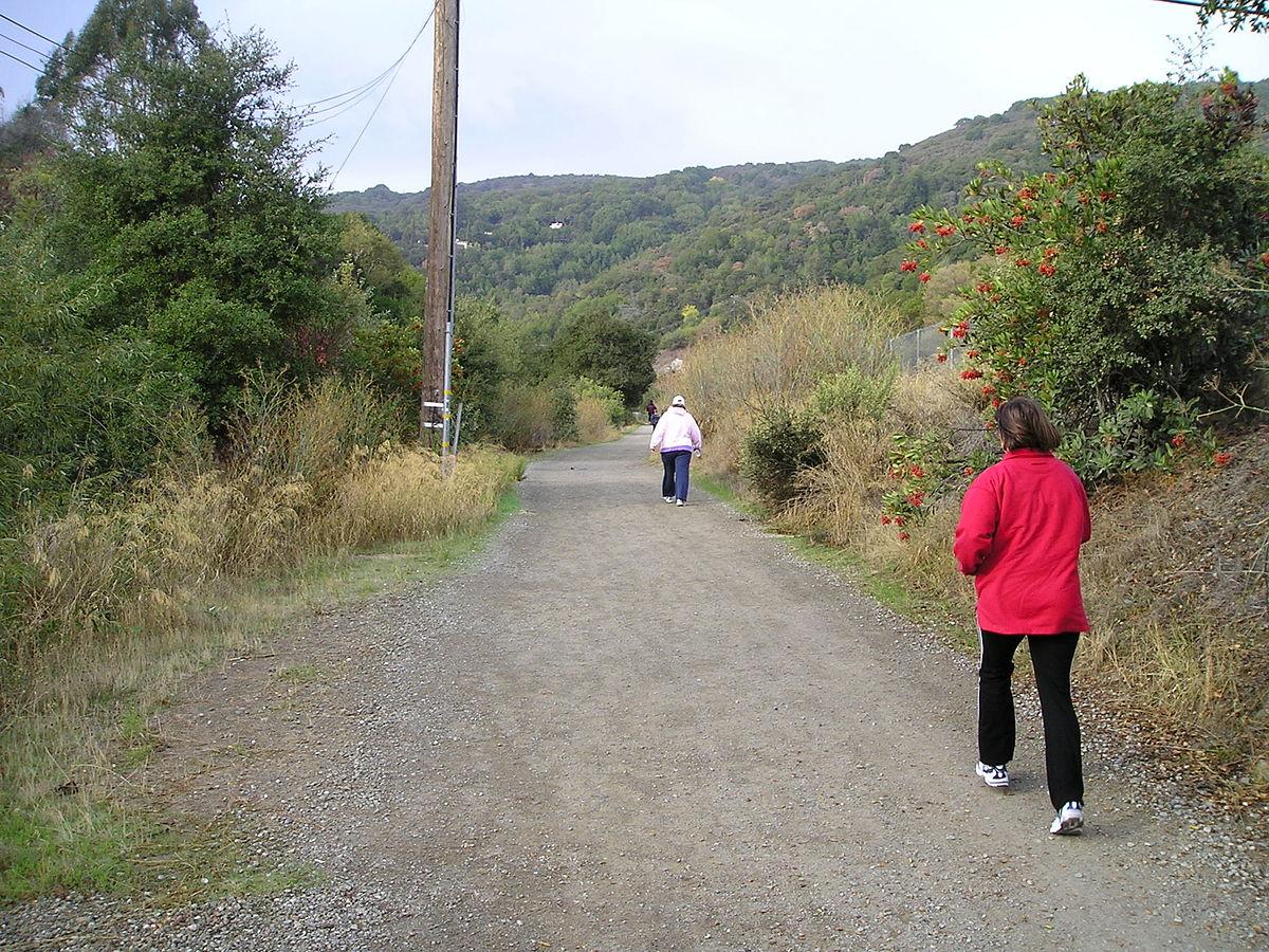 Los Gatos Creek Trail - Wikipedia