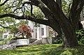 Louisiana State University, Baton Rouge, Louisana - panoramio (1).jpg
