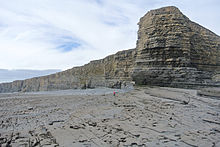 Lower Lias Nash Point Glamorgan.JPG