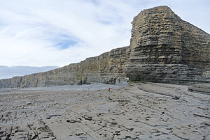 Blue Lias - Lower Lias sequence exposed at Nash Point, Glamorgan, Wales.