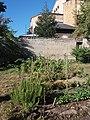 Lycée de Saint-Just de Lyon - Jardins ouest - Potager.jpg