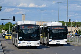 MAN Lion's city buses in Sofia.jpg