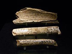 Photographie en couleurs sur fond noir de trois fragments oblongs en ivoire et disposés en parallèle.