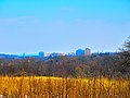 Madison Skyline from Owen Conservation Park - panoramio.jpg