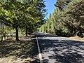Main street, Lake Bathurst, New South Wales.jpg