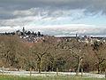 Mammolshain-kronberger-burg-blick-013.jpg