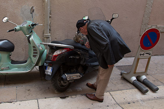 Man and cat in Lyon, France.jpg