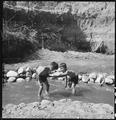 Manzanar Relocation Center, Manzanar, California. Evacuee children enjoying a hot summer afternoon . . . - NARA - 538079.tif