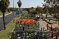 Maraton Tel Aviv 2014 Rokach Street.JPG