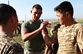Marines train with Mongolian troops, police on control holds and non-lethal tactics 130818-M-MG222-010.jpg